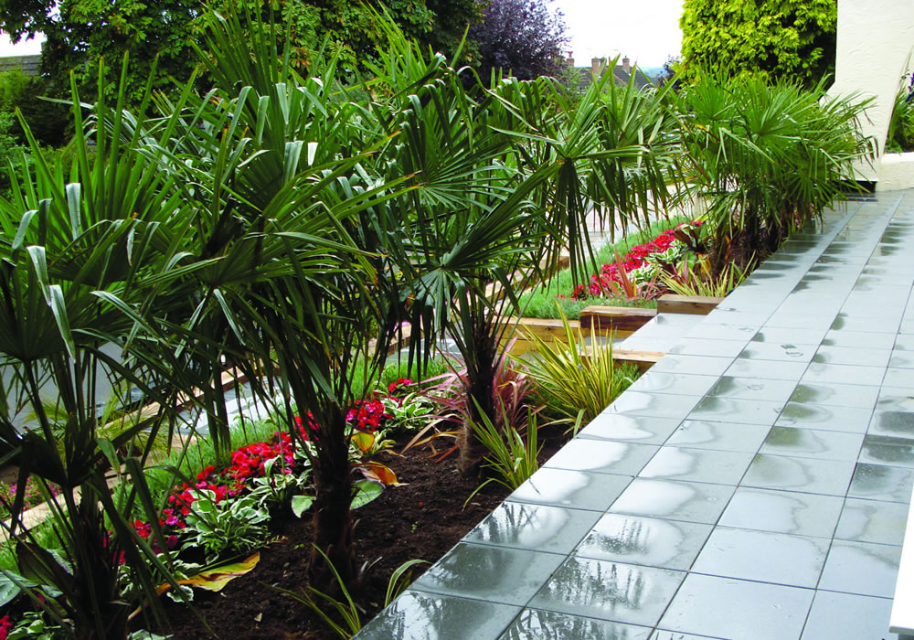 Garden Planting Derby Mediterranean Planting Nottingham Garden
